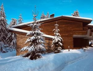 Apartments Borovets