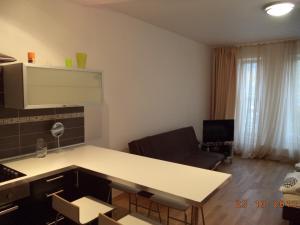 Apartmány Ekaterinburg, Apartmány  Karlovy Vary - big - 28