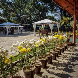 Gokarna Forest Resort (7 of 116)