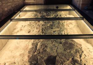 Agriturismo Antico Muro, Farm stays  Sassoferrato - big - 12