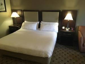 Holiday Inn Express Hotel & Suites Albemarle, Hotels  Albemarle - big - 5