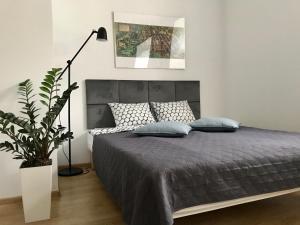 Poznan Rents Apartamenty Mostowa Parking Free