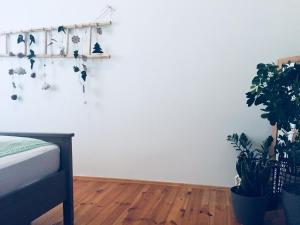Apartament w Centrum Gliwic