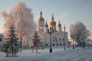 Neftehimik Hotel - Tobolsk