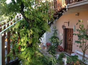 Villa Serena - Casacce