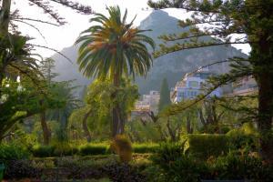 Villa Angela, Hotels  Taormina - big - 18