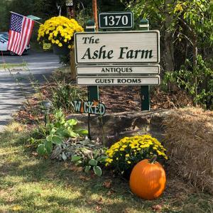 The Ashe Farm - Accommodation - Marshall