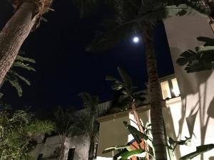 Fabulous Apartment next to UCLA Los Angeles B1