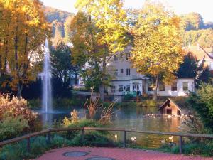 Parkhotel Am Schwanenteich - Wingerode