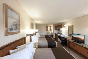 Newmarket Inn, Motels  Newmarket - big - 28