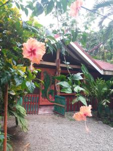 Pura Vida Inn, Cahuita