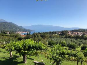 Hotel Villa Arcadio (29 of 60)