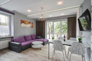 Apartament Hrabiego Centrum