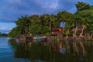 Jicaro Island Ecolodge (2 of 34)