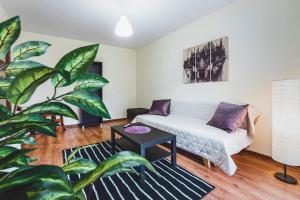 Niecala 15 Prince 1 bedroom apartment TV