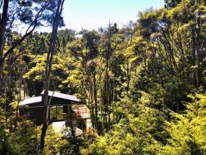 Kauri Creek Tree House