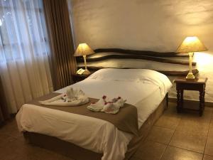 Hotel Sol de Ica, Hotely  Ica - big - 5