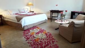 Hotel Sol de Ica, Hotely  Ica - big - 4