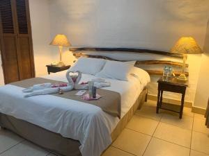 Hotel Sol de Ica, Hotely  Ica - big - 2