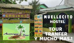Muellecito Hostel, Tortuguero