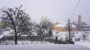 Penzión Magura, Pensionen  Bardejov - big - 12