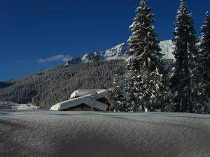 Haus Holiday - Hotel - Klosters