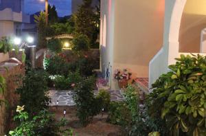 Alvi Studios Aegina Greece