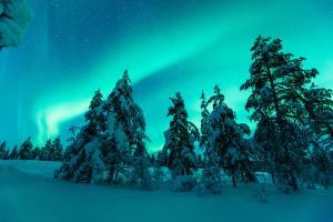 Kakslauttanen Arctic Resort (30 of 123)