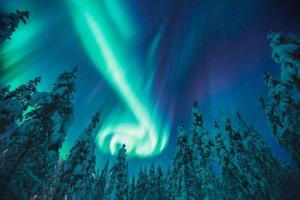 Kakslauttanen Arctic Resort (33 of 123)
