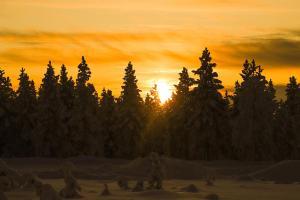 Kakslauttanen Arctic Resort (28 of 123)