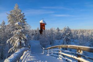 Kakslauttanen Arctic Resort (24 of 123)
