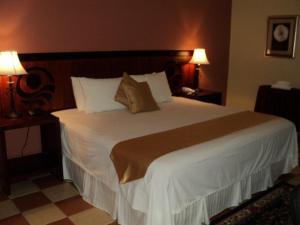 Hotel Villa del Sol, Отели  Пуэрто-Кортес - big - 17