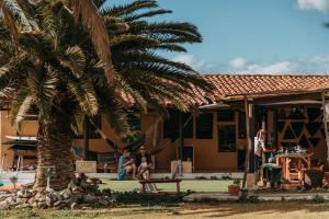 Twinfin Surf Camp, Costa Adeje