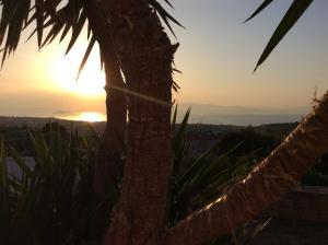 Marianna s little secret Aegina Greece
