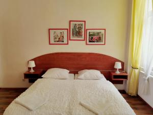 Accommodation in Trutnov