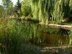Aux Jardins d'Alice, Bed & Breakfasts  Asnans - big - 35
