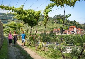 Six Senses Douro Valley (13 of 73)