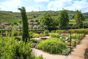 Six Senses Douro Valley (5 of 73)