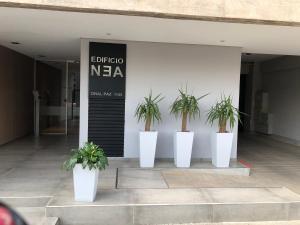 . Edificio NEA