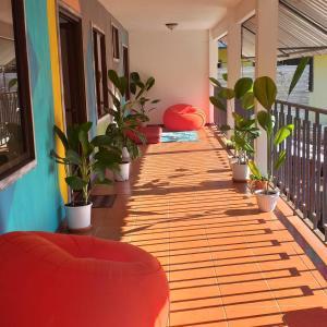 Nomad House, Puerto Viejo