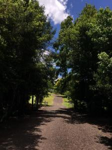 Balneário Vier, Dovolenkové parky  São Pedro de Butiá - big - 22