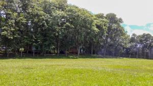 Balneário Vier, Dovolenkové parky  São Pedro de Butiá - big - 59
