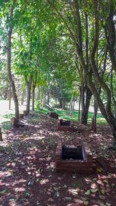 Balneário Vier, Dovolenkové parky  São Pedro de Butiá - big - 63
