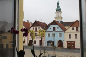Pension Pension TV Planá Tschechien