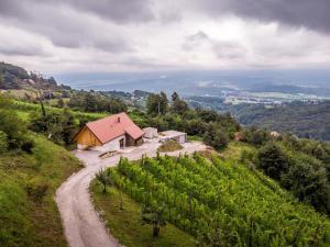 Vineyard cottage Škatlar 3