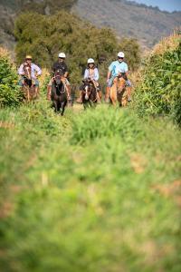 La Casona at Matetic Vineyards (8 of 48)