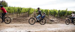 La Casona at Matetic Vineyards (10 of 48)