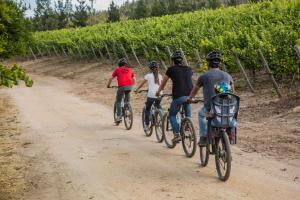 La Casona at Matetic Vineyards (14 of 48)