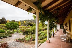 La Casona at Matetic Vineyards (9 of 48)