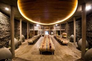 La Casona at Matetic Vineyards (7 of 48)